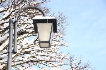 Strassenlaterne vor blauem Himmel im Winter