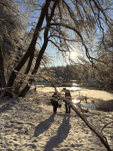 canvas print picture schöner Wintertag