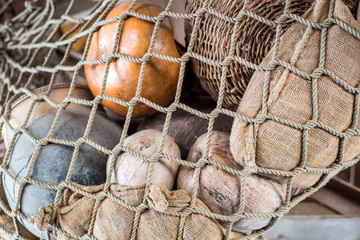 Coconuts in net