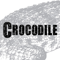 Crocodile vector, illustration, rubber stamp