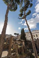 Torre di piazza Argentina - Roma
