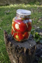 Mixed Pickles - vinaigrette