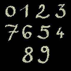 Numeric figures of raw civet coffee beans