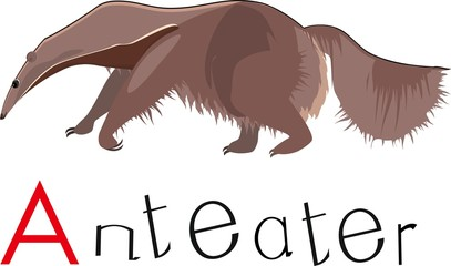 Anteater with title