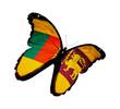 Sri Lanka flag butterfly flying, isolated on white backgrou