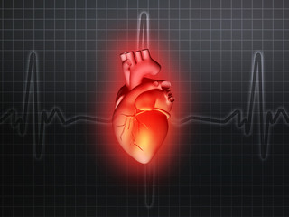 heart disease 3d anatomy illustration gray