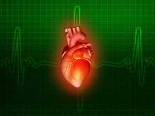heart disease 3d anatomy illustration green