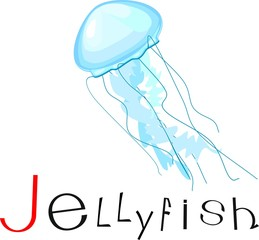 Jellyfish with title