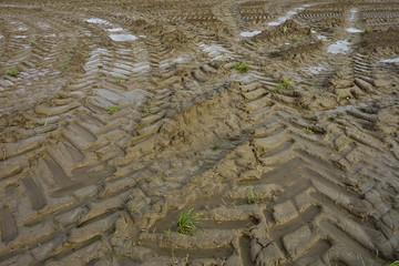 Traces de pneus de tracteur dans un champ