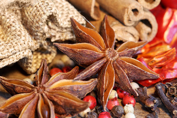 Spices with anise seeds, cinnamon, clove, chili