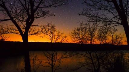 Starry Spring Night