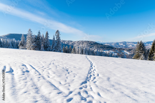 Winter landscape on sunny day, Beskid Sadecki Mountains, Poland
