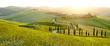 Leinwanddruck Bild - Sunny fields in Tuscany, Italy
