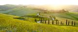 Sunny fields in Tuscany, Italy - 75432276