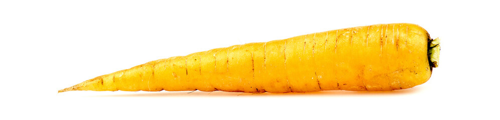 Yellow organic carrot isolated on white