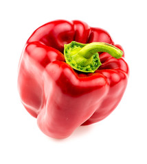 Isolated macro of juicy and plump red pepper