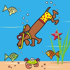 Dog and snorkel
