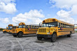 School Buses on Parking Lot - 75441040
