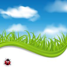 Summer beautiful card, nature background