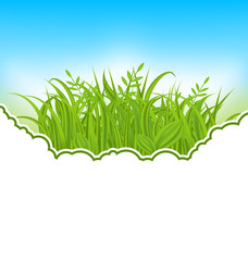 Nature card with green grass