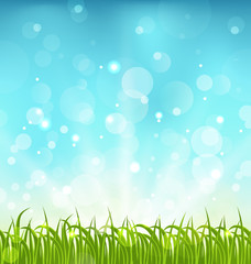 Summer nature background with grass