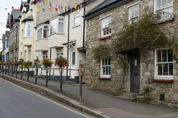 blossomig street  at Moretonhampsted, Devon