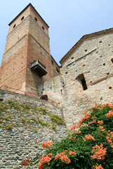 The fort of Serralunga d'Alba in Piedmont