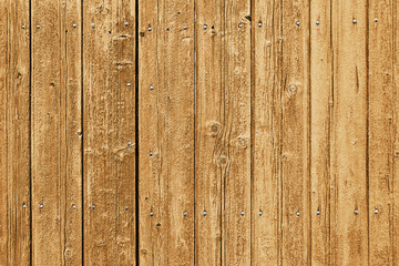 Highly detailed wood plank background with nails
