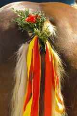 Pferd mit Schmuck am Schweif in Bayern