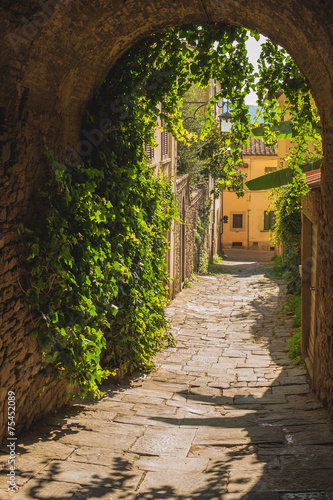 Old streets of greenery a medieval Tuscan town. - 75452089