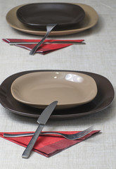 Setting  table with  cutlery and dishes