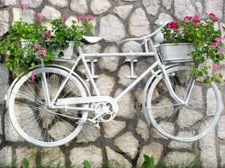 Flower on a white bicycle on garden
