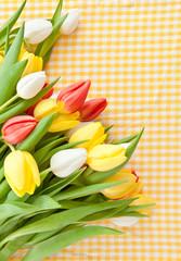 Frische Tulpen auf kariertem Hintergrund
