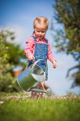Little helper on the green the grass on a summer day