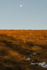 Paesaggio collinare invernale