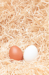 Frohe Ostern, zwei Eier, Holzwolle, weich gepolstert