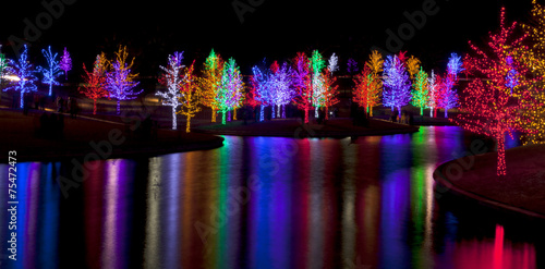 Poster Meer / Vijver Trees tightly wrapped in LED lights for the Christmas holidays r