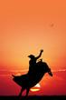 bull rider at sunset