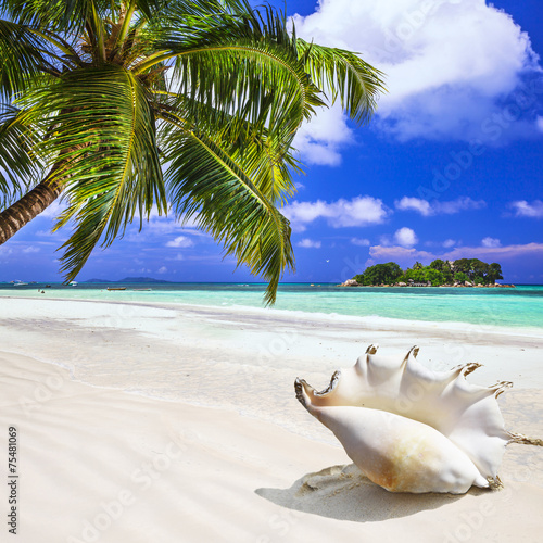 fototapeta na ścianę wakacje na tropikalnej wyspie