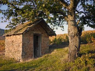 Cabane dans le beaujolais