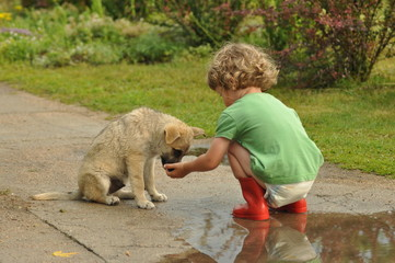 Boy, child in red rubber Wellingtons, talking with the puppy