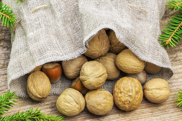 Walnuts with hazelnuts in bag with fir branches around