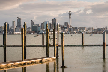 floating docks in Auckland marina at sunset