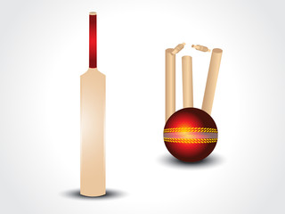 vector cricket bat & ball with stumps