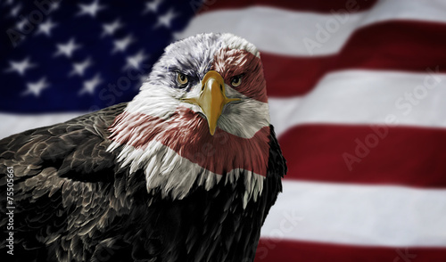 Staande foto Vogel American Bald Eagle on Flag