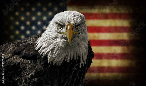 Fotobehang Vogel American Bald Eagle on Grunge Flag