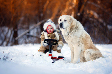 The child sits on the snow-scooter, next to big dog