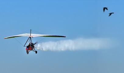 Motorized Hang Glider