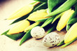 Easter setting with yellow tulips and eggs