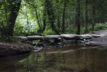 a stone bridge in the woods
